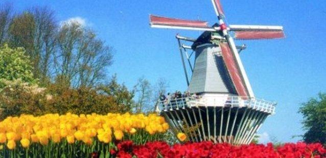 ik-hou-van-holland